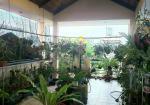 Quận 3, Hoàng Sa, 4 tầng, ngang 5m 3PN sân thượng trồng rau 6 tỷ 2 TL (0902664082)