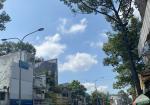 Bán nhà cây Xăng Hồng Lạc 615m2 C4 (16 *39 ) P 10 Tân Bình  giá 115 tỷ