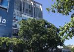 Cho thuê VP-CTIN Building- Hoàng Văn Thụ,Q.Tân Bình, TP.HCM giá ưu đãi mùa Covid